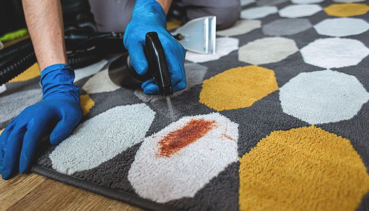 professional removes stain from a rug.
