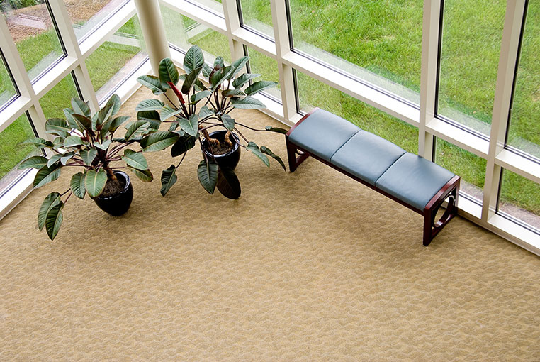 Clean commercial lobby carpet